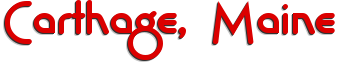 Carthage business directory logo
